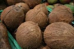 coconuts Mawlamyine