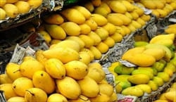 mango Mawlamyine Travel Information