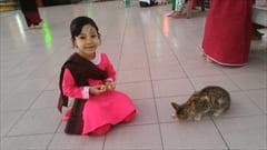 mawlamyine kyeik than lan pagoda、パゴダ、ミャンマーの女の子、かわいい、猫