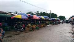 Mawlamyine、ゼイギー・アッパーマーケット 写真 果物、フルーツ