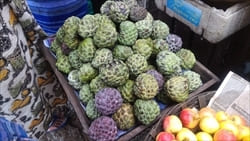 Sugar Apple, Mawlamyine